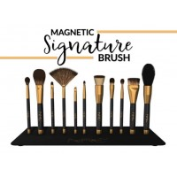 Magnetic Signature Brush & Metal Plate